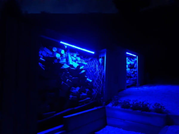 shed lights blue