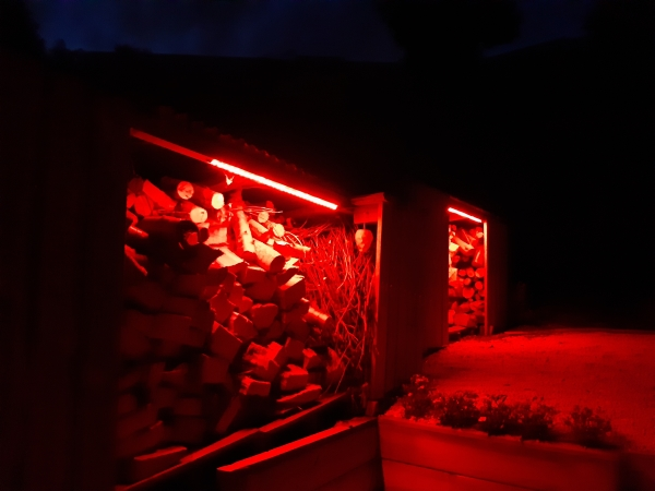 shed lights red